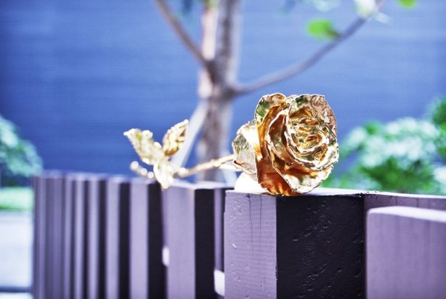 24k-gold-plated-rose-valentines-day_1